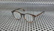 Oliver People Delray Polished Tortoise